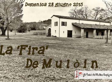 """Domenica 28 giugno dalle ore 16 in poi alla """"Fira de Mulòin"""" presso il Mulino Sapignoli a Santo Marino di Poggio Torriana."""