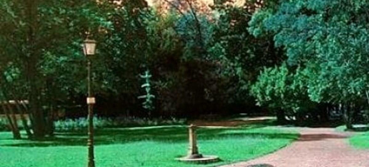 Santarcangelo, nuovo bosco lungo la Via Emilia
